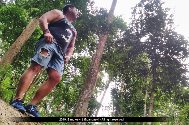 Hutan Hujan Genting